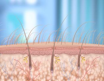 Волос лечение выпадения волос методы